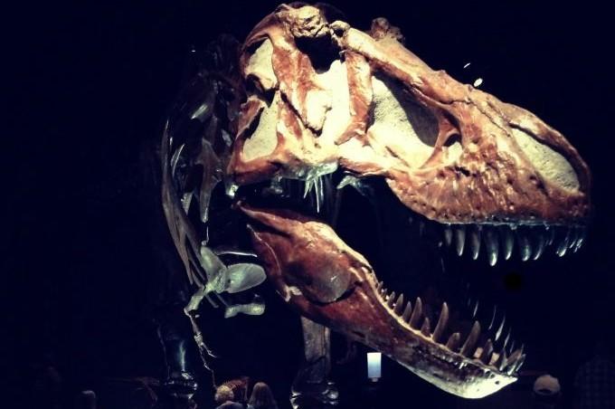 A Jurassic family adventure in Alberta