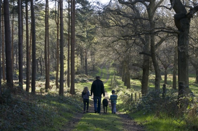 36 Cool Places to Visit in England with Kids