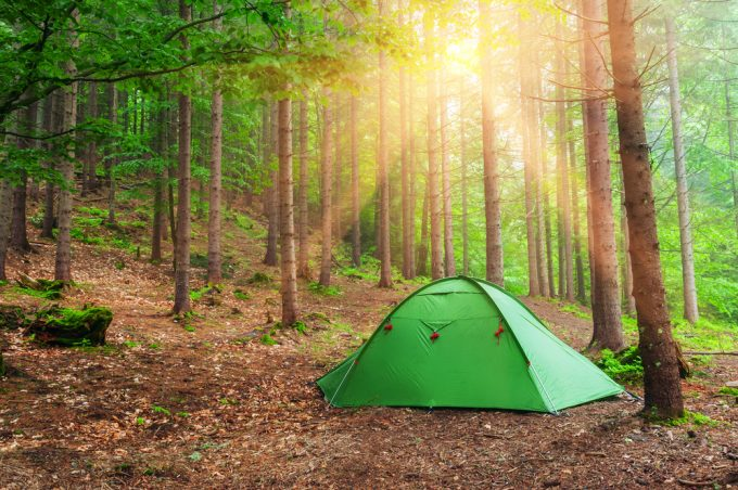 Wild camping - what it is and how to do it with kids